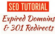 Expired Domains & 301 Redirects (PBN SEO Optimization Session)