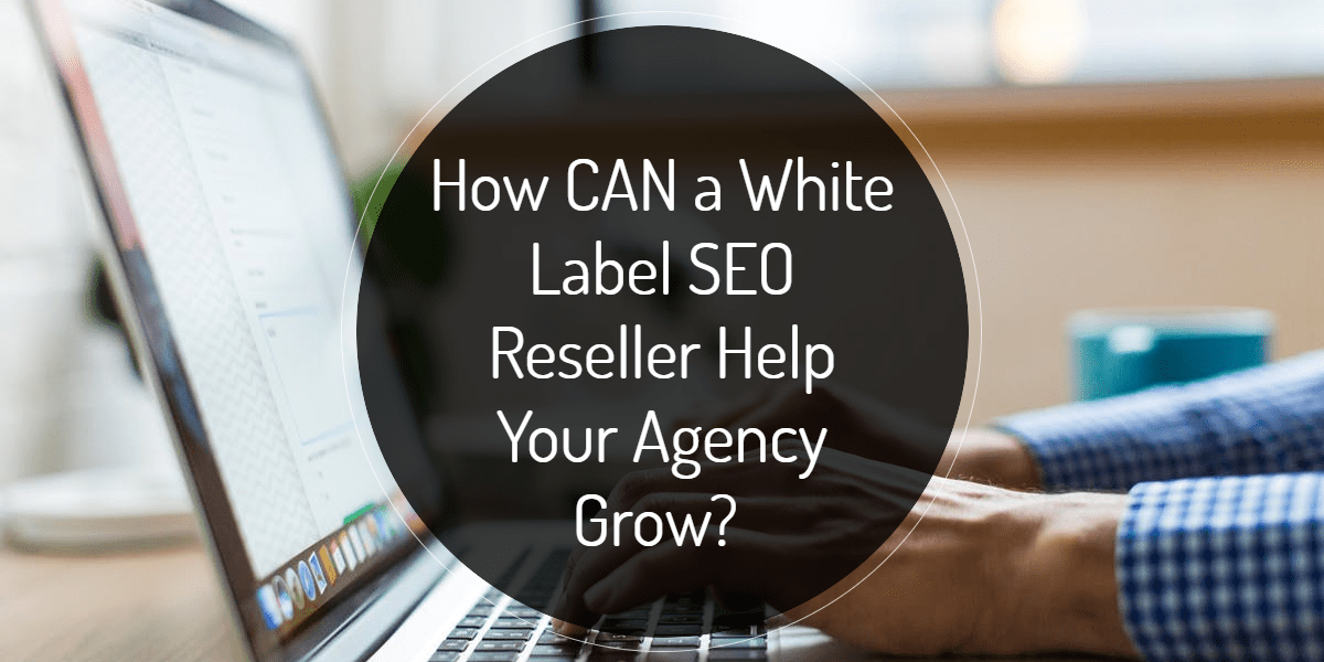 How CAN a White Label SEO Reseller Help Your Agency Grow?
